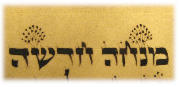 Fbrangen Torah writing.