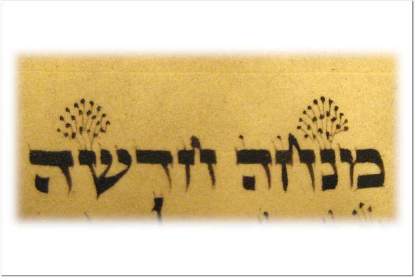 Fabrangen Torah writing.